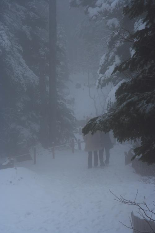 Snow Country 05.11.15 _c0030874_851434.jpg