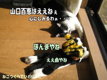 b0041182_123255.jpg