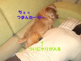 d0043478_22405020.jpg