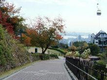 ひとりで神戸を遊ぶ・布引ハーブ園_c0055363_21204575.jpg