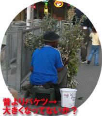 e0038078_4241052.jpg