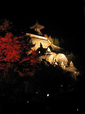 深秋の夜の夢(その1)・・・「竹楽」の光景_c0001578_212052.jpg