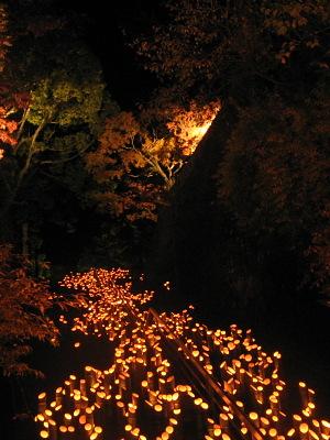 深秋の夜の夢(その1)・・・「竹楽」の光景_c0001578_22263733.jpg