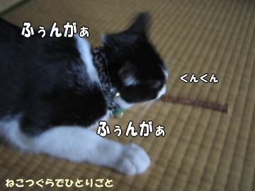 b0041182_19225092.jpg