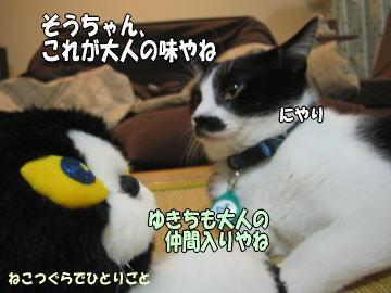 b0041182_19225929.jpg
