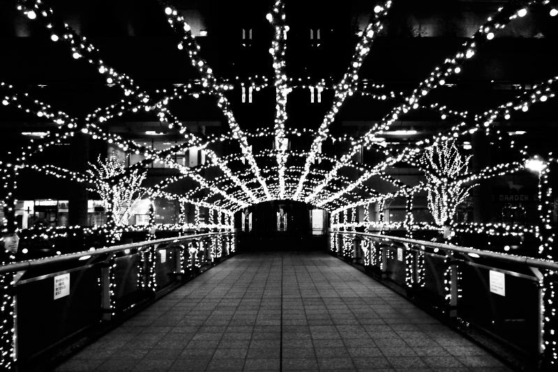 YOKOHAMA NIGHT(GRD)_e0004009_23545644.jpg