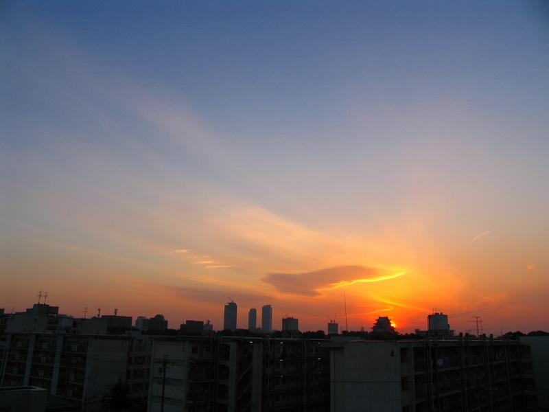 Evening Scene 05.11.23 _c0030874_16464821.jpg