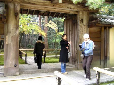 大徳寺 高桐院1_e0048413_2314227.jpg