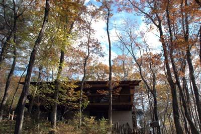 西郷村の山荘、秋の終わり_b0038919_16592120.jpg