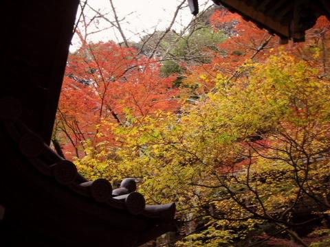 京都・近江の旅 永観堂~南禅寺周辺 (1)_b0053765_12551611.jpg
