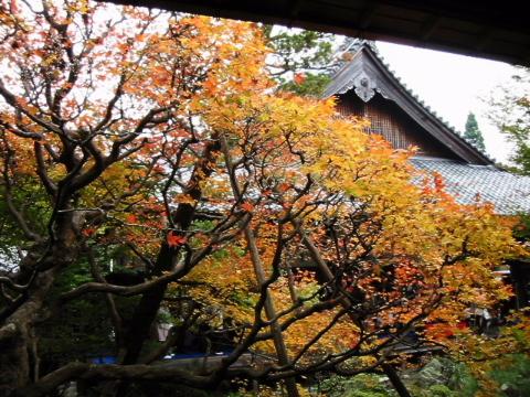 京都・近江の旅 永観堂~南禅寺周辺 (1)_b0053765_9165495.jpg