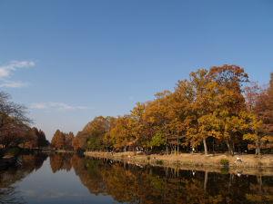 上尾丸山公園_a0027275_18561129.jpg