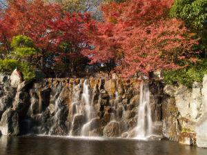 上尾丸山公園_a0027275_1856217.jpg