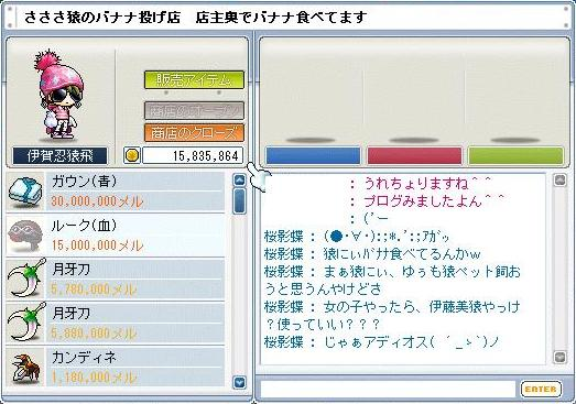 e0087434_3394146.jpg