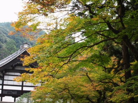 京都・近江の旅 南禅寺周辺 (2)_b0053765_2313851.jpg