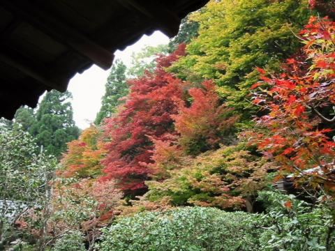 京都・近江の旅 南禅寺周辺 (2)_b0053765_23173844.jpg
