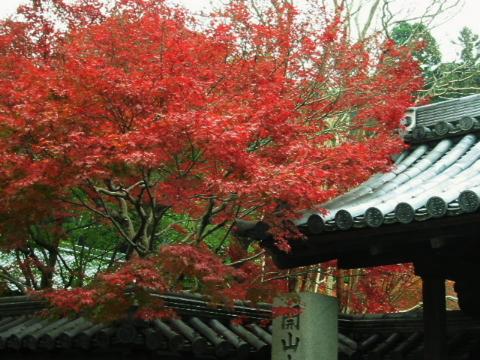 京都・近江の旅 南禅寺周辺 (2)_b0053765_23204246.jpg