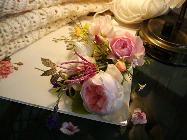 編み物とバラ_f0007106_19195433.jpg