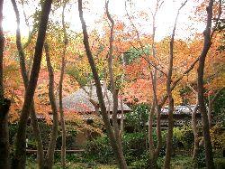 京都の紅葉(その3)。_c0005672_2112072.jpg
