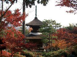 京都の紅葉(その3)。_c0005672_2163585.jpg