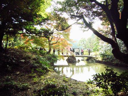 """""""観楓(かんぷう)    \""""Viewing Maple Trees\""""_b0029036_2056206.jpg"""