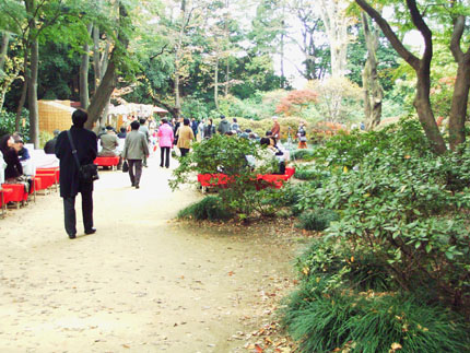"""""""観楓(かんぷう)    \""""Viewing Maple Trees\""""_b0029036_2057425.jpg"""