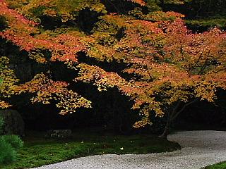 京都・近江の旅 南禅寺周辺 (3)_b0053765_17191180.jpg