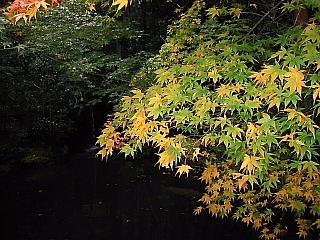 京都・近江の旅 南禅寺周辺 (3)_b0053765_17221439.jpg