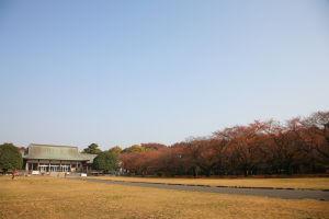 江戸東京たてもの園_a0027275_1610547.jpg