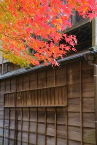 江戸東京たてもの園_a0027275_16113681.jpg