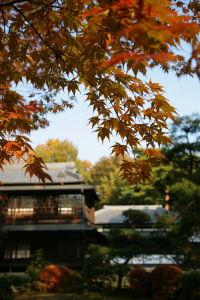 江戸東京たてもの園_a0027275_1611392.jpg