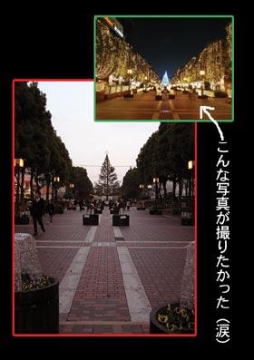 b0059664_20125747.jpg