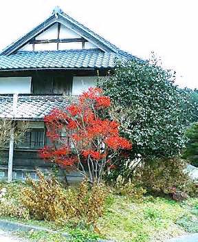 今日の川内村_d0027486_18594726.jpg