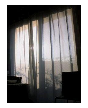 天気がよい日は_a0043697_813323.jpg