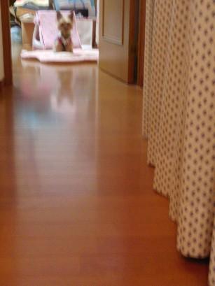 f0002833_23245739.jpg