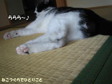 b0041182_0221077.jpg