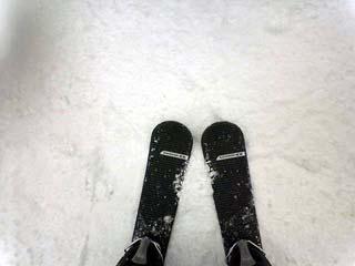 今年の雪はいつ降る?_a0016730_2312126.jpg