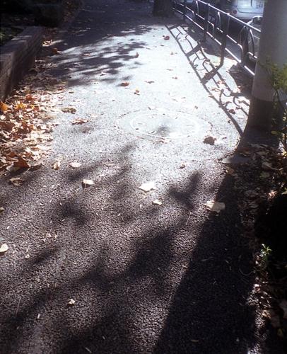 秋から冬_c0075341_2352046.jpg