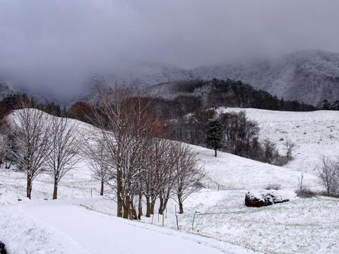 雪景色_e0084756_22361995.jpg