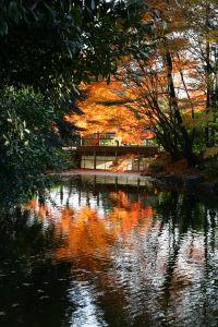 上尾丸山公園_a0027275_2124374.jpg