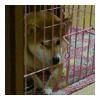 b0057675_1115381.jpg