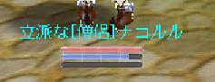 b0027699_6155186.jpg