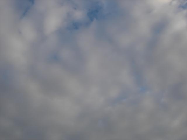 見上げると・・・雲が・・・_e0051174_7315060.jpg