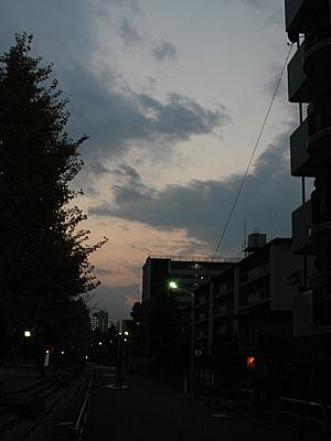 a0003238_1742076.jpg