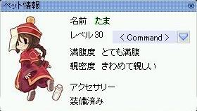a0053943_52031.jpg