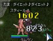 a0053943_5324853.jpg
