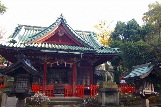 尾崎神社の大イチョウ_d0043136_20301279.jpg