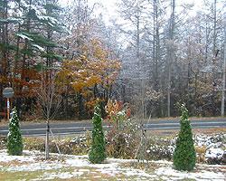 雪景色_d0050155_8473013.jpg