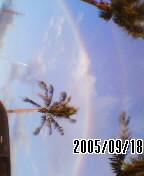f0012883_1822766.jpg