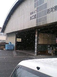 雪やこんこん♪_d0062298_13285865.jpg